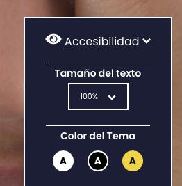 Control de color y tamaño de texto para accesibilidad web