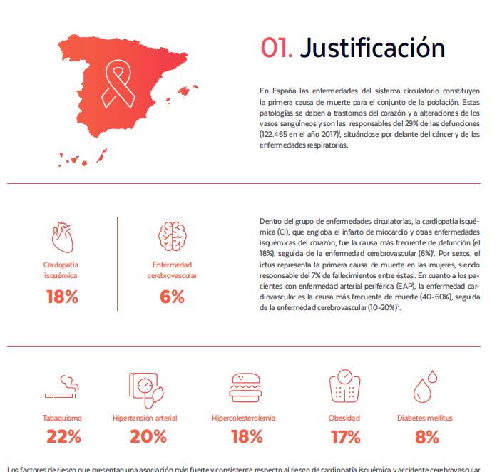 Detalle de iconos y mapa de España. Diseño del resumen ejecutivo